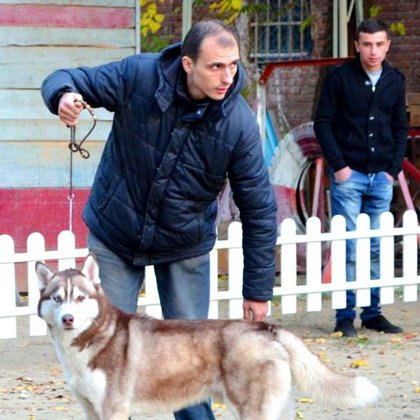 Dog Show WKU/Georgian Kennel Union 9.11.2014